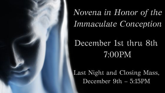 Novena in Honor of the Immaculate Conception